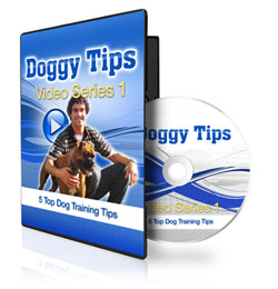 Free Dog Training Video Course
