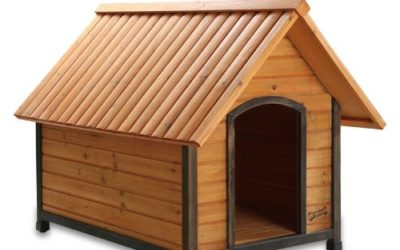 Pet Squeak Arf Frame Dog House Review