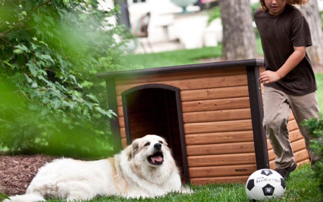 Precision Pet Extreme Outback Log Cabin Dog House Review