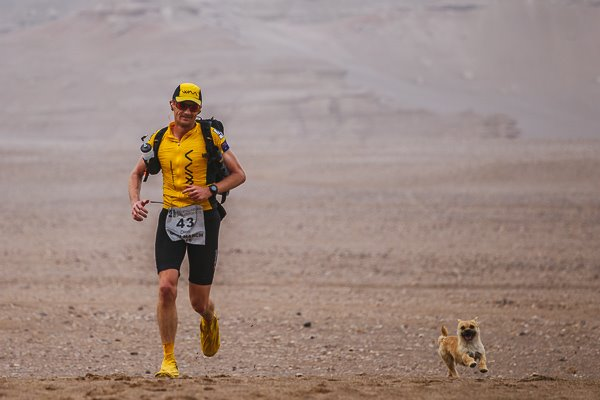 Stray Dog Follows Runner Across Desert