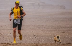 Stray Dog Follows Runner Across Gobi Desert
