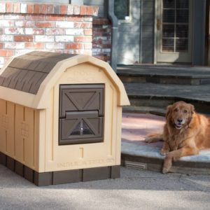 ASL Solutions Dog Palace Compared To Size Of Dog