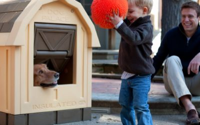 ASL Solutions Dog Palace Insulated Dog House Review